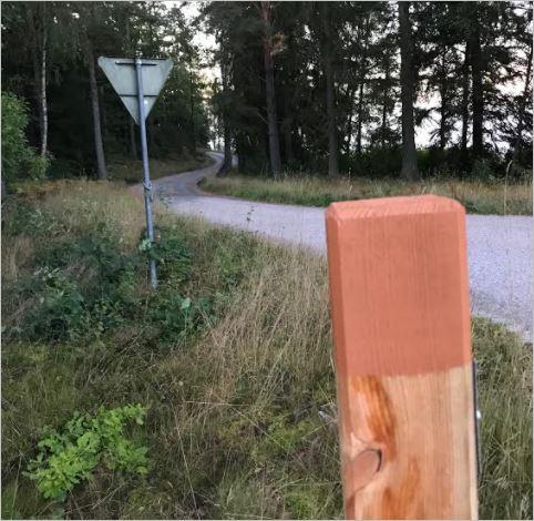Blekinges längsta grusväg (2)